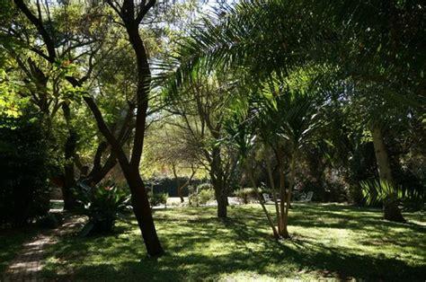Garden Bulawayo Lush Green Garden Picture Of Bulawayo Bulawayo Province