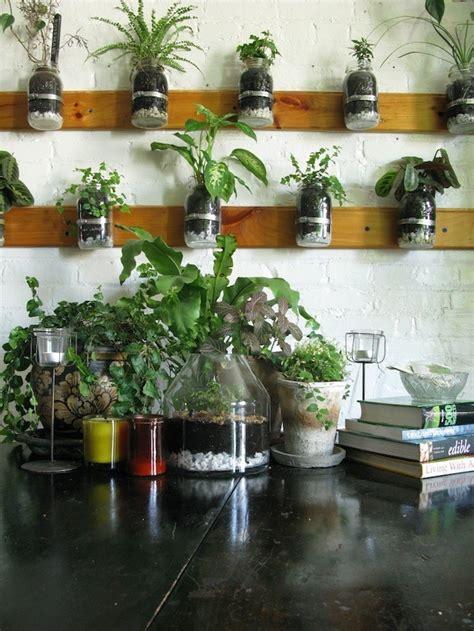 jar herb garden wall indoor garden and herb solutions canadian the grid