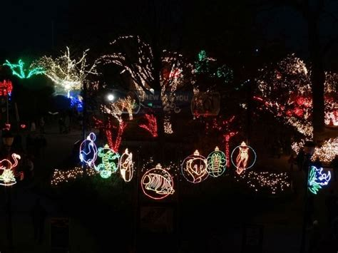 toledo zoo lights hours lights before display at toledo zoo should be