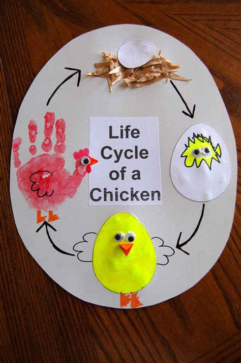 chicken crafts for today s craft cycle of a chicken qormi primary