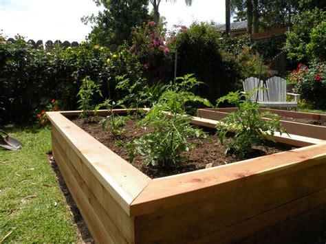 a vegetable garden box building vegetable boxes for a garden california