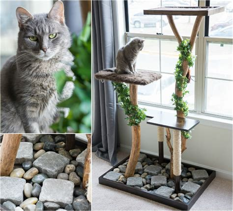 tree with cats make a cat tree using real branches my amazing diy cat tree