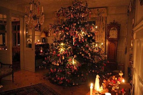 swiss tree tree illuminated with real candles