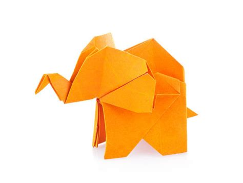 origami picture origami pictures images and stock photos istock