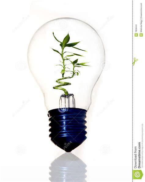 eco lights eco light bulb with bamboo stock image image 7858441