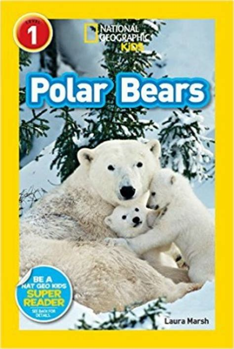 picture books about bears polar books for crafty at home