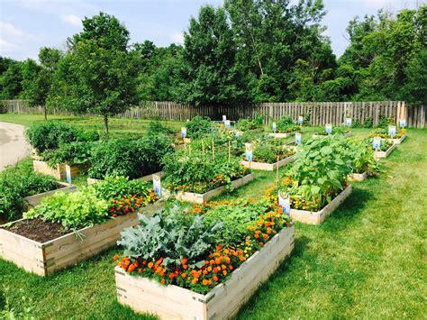 Garden Of Commune Community Gardening Nourish Project Community Garden