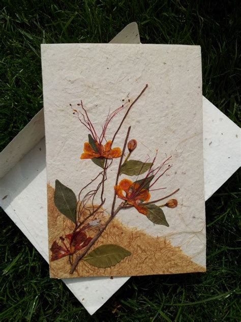 how to make greeting cards with pressed flowers 17 best images about pressed flowers everlastings on