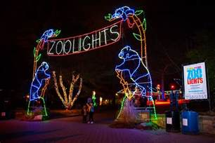 national zoo zoo lights zoolights 2017 lights at the national zoo