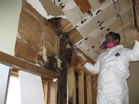 Get Rid Of Moisture In Basement by Midwest Basement Tech Steps To Hiring The Best Mold