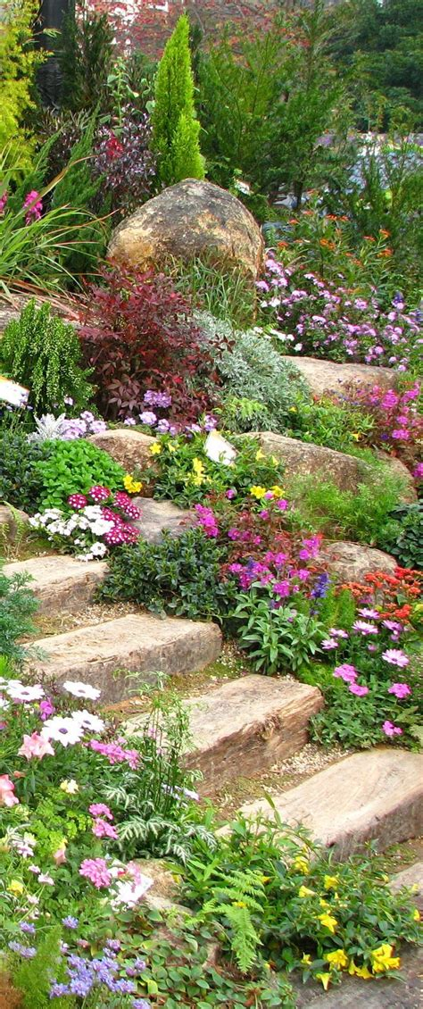 what is rock garden best 20 rock garden borders ideas on rock