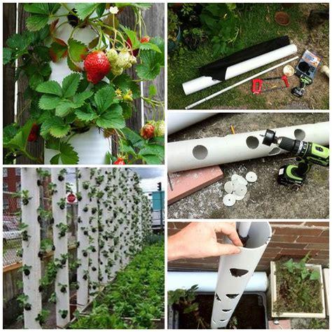 pvc garden ideas wonderful diy vertical pvc planter