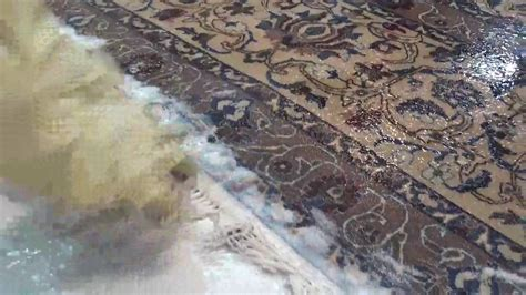 limpieza alfombras persas limpieza de flecos alfombra persa alfombras rahmati 18