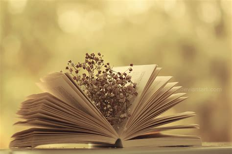 picture book photography vintage book by aoao2 on deviantart