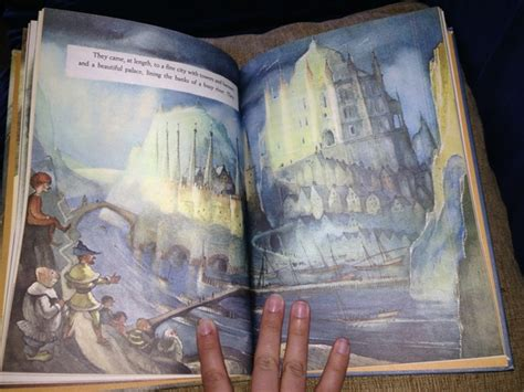 illustrated picture book beautifully illustrated children s book book exchange