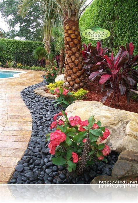 rock garden landscaping ideas best 25 palm trees landscaping ideas on