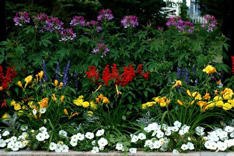 garden border plants flowers flower borders ideas to make your landscaping sizzle