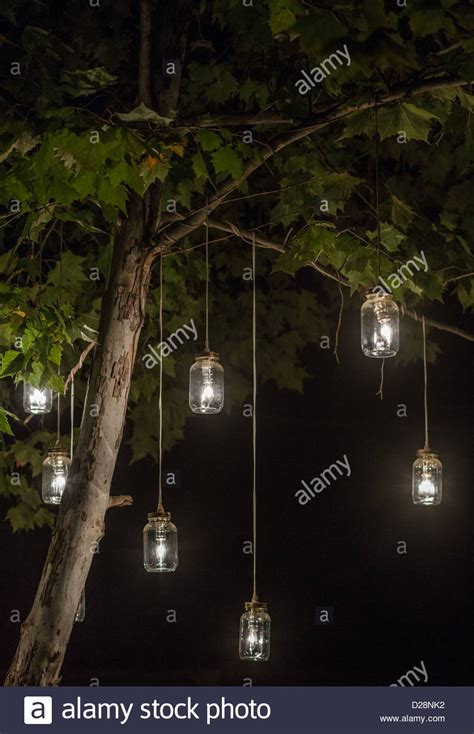 hanging tree lights glowing jar lights hanging from a tree stock photo