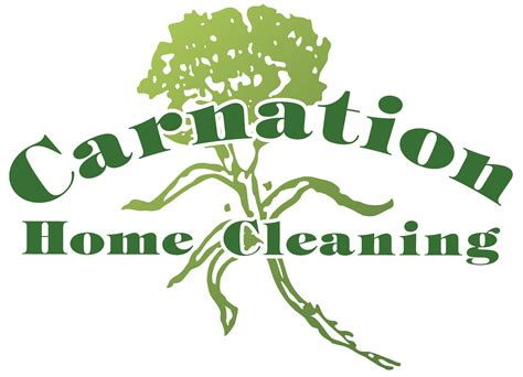 carnation home cleaning myguy referrals for all of s needs