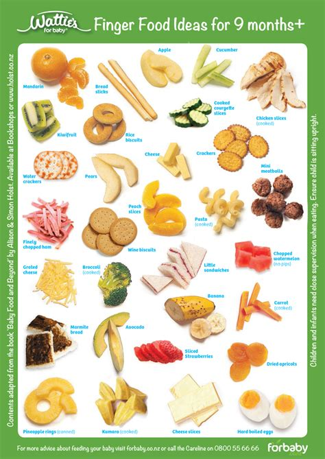 food ideas for finger food finger food ideas 9 months for baby nz