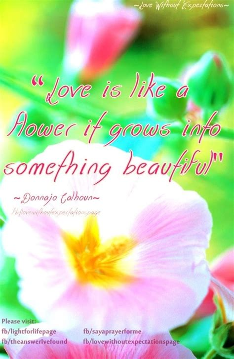 quotes on gardens and flowers 89 best images about flower bloom quotes on
