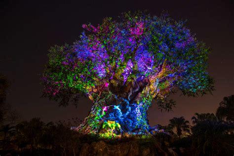 disney tree lights the tree of awakens at disney s animal kingdom