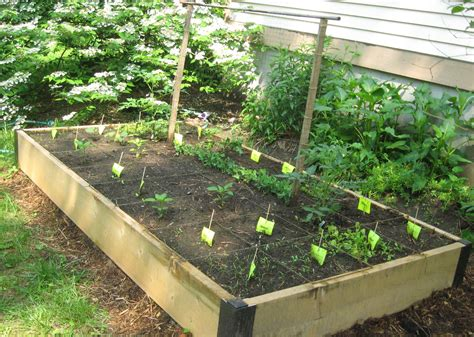 how to make home vegetable garden easy and simple diy square foot wood raised bed vegetable