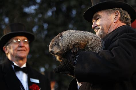 true meaning of groundhog day groundhog day is the dumbest american for the win