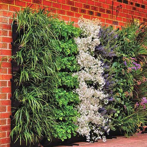 garden on wall wall garden diy vertical wallgarden system plants green