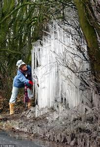 icicle tree that s a winter nature creates an
