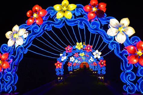 lights new orleans china lights new orleans city park