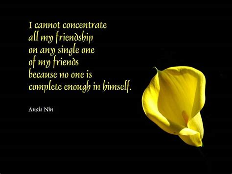 quotes about friendship 30 touching friendship quotes