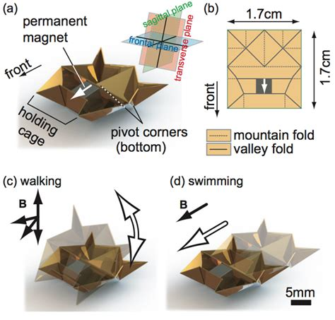 how to make a origami robot self folding mini origami robots are the nanosurgeons of