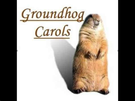 true meaning of groundhog day 10 images about groundhog day punxsutawney phil on