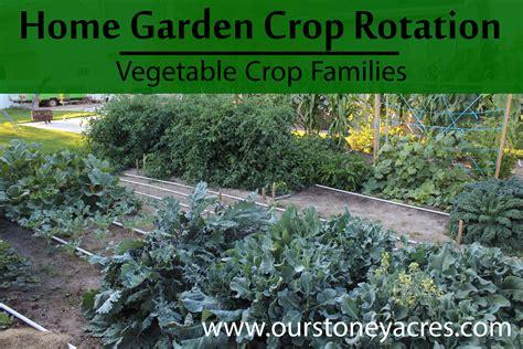 crop rotation home vegetable garden garden crop rotation vegetable crop families stoney acres