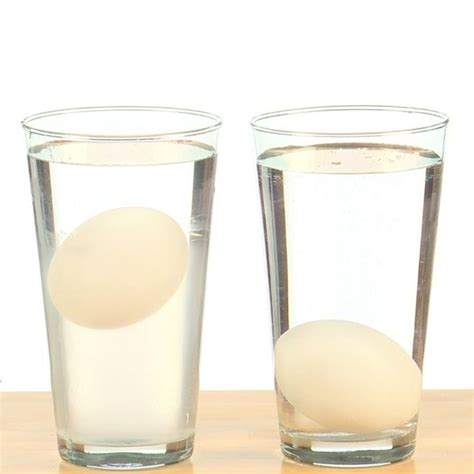 Egg Float Or Sink by The Floating Egg Eggs Sink In Regular Tap Water But