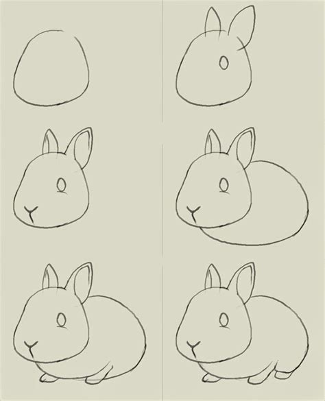 how to draw step by step how to draw a simple bunny step by step learn to draw