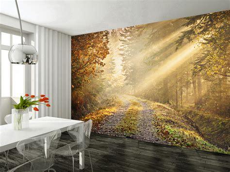 Wallpaper Wall Mural wall mural autumn forest wallsorts