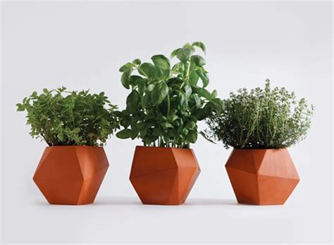 herb pot herb pot accessories better living through design