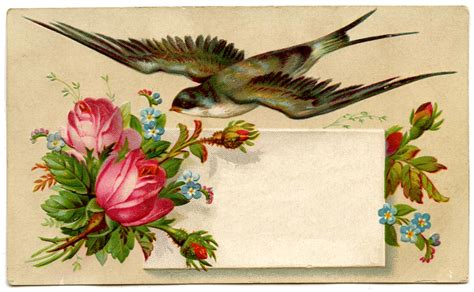 vintage card vintage image pretty calling card with bird the