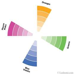 complementary color to pink 100 complementary color to pink color wheel better