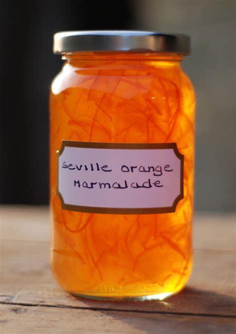 orange marmalade baking with marmalade recipes vivien lloyd