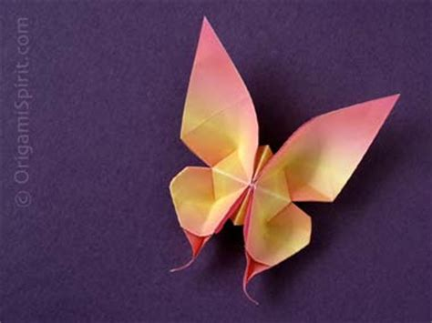 origami swallowtail butterfly origami maniacs origami swallowtail butterfly by evi