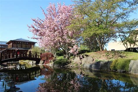 japanischer garten weißensee lohnt sich die th 252 ringencard teilzeitreisender de