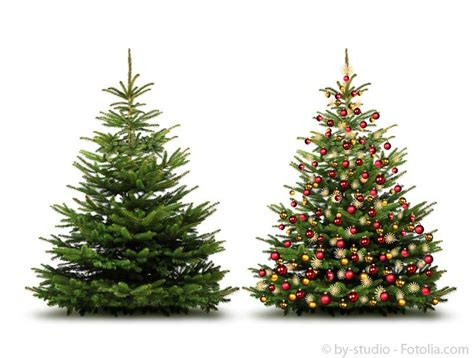 der weihnachtsbaum weihnachtsbaum wettbewerb 2014 f 252 r kunden der gartenhaus
