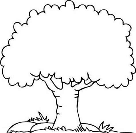 tree color in tree coloring pages free printable coloring pages