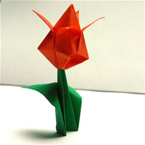 mit origami origami pflanzen falten tulpe