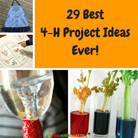 4 h craft projects 29 best 4 h project ideas allfreekidscrafts