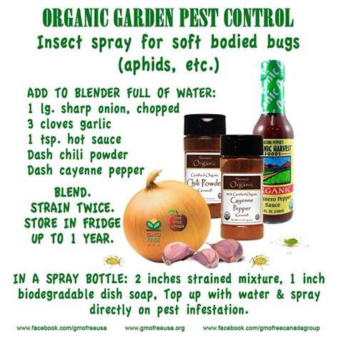 Gardener S Supply Company Wasp Deterrent Insect Repellent The Garden