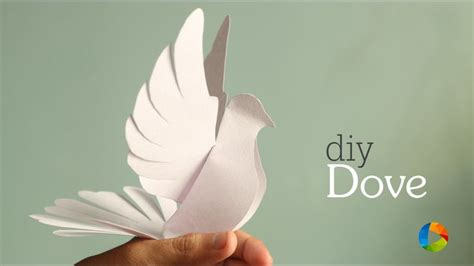 paper dove craft 1103 best images about paper plate crafts on